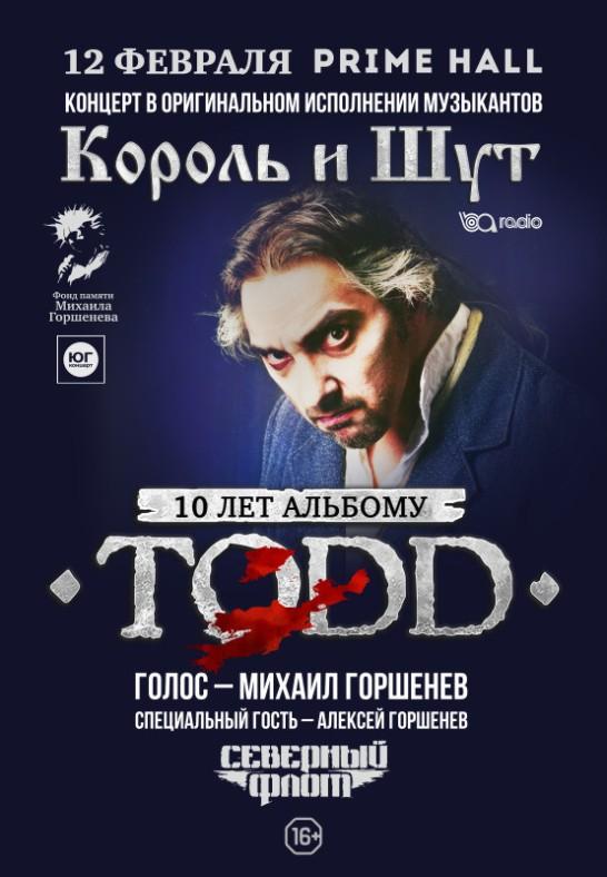 ''10 лет альбому TODD''